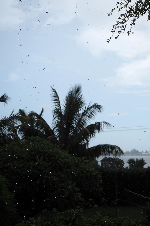 Suechtig-nach-Mauritius-16.jpg