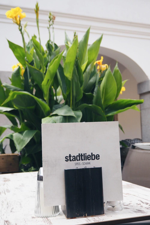 Linz-Tipp-Stadtliebe-Suechtig-nach-Lifestyleblog-Fashionblog-Foodblog-Oberoesterreich-Linz 12
